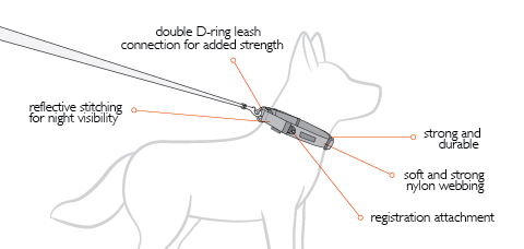double-up-dog-diagram.jpg