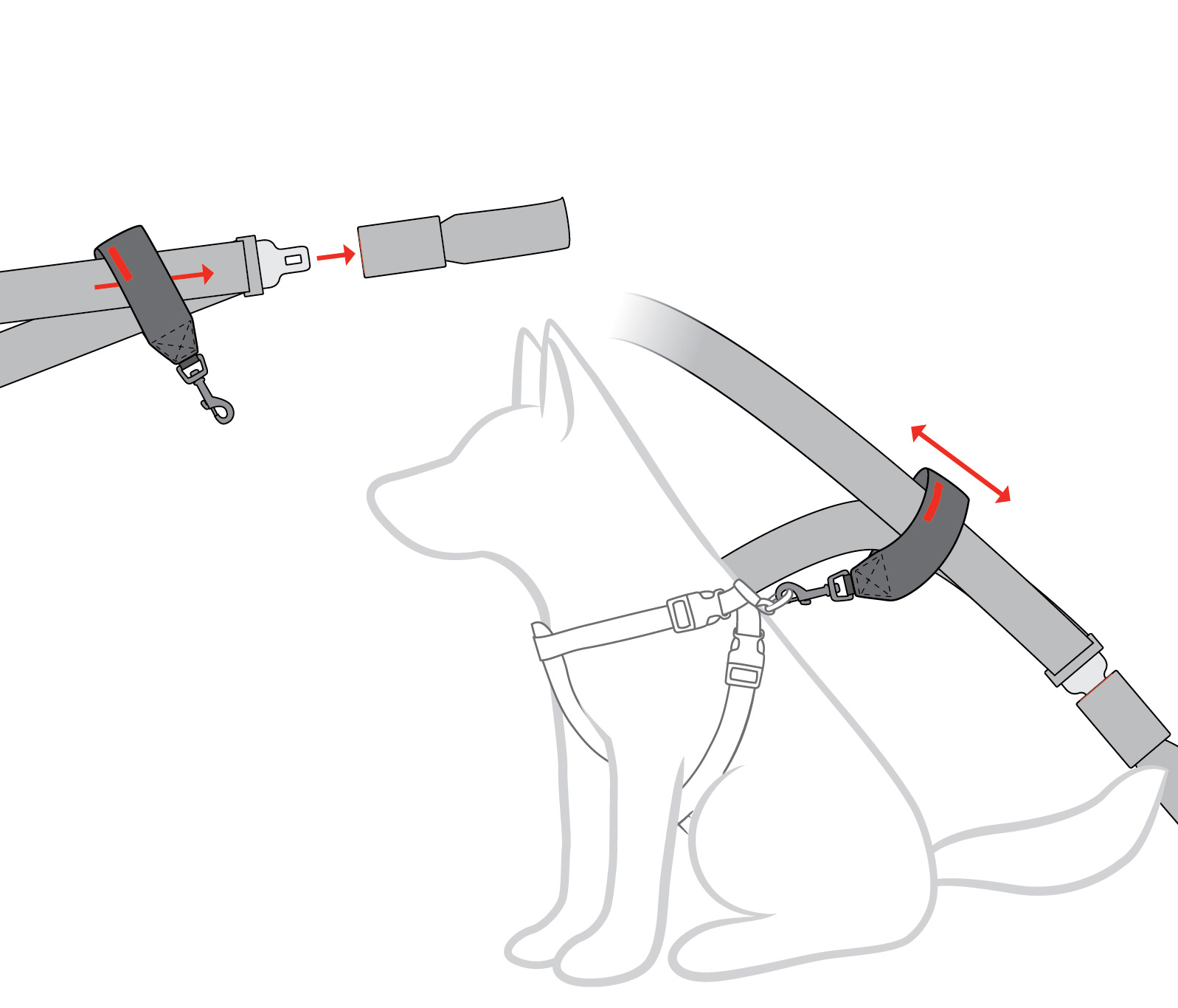 car-restraint-diagram.jpg