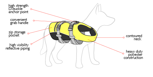 dfd-dog-diagram.jpg